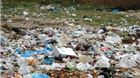 Prijatelji životinja pohvaljuju odluku o obaveznoj naplati plastičnih vrećica