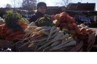 Povrtlari: Otkupljivači gubitke na zaradi namiruju otpisom robe