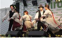 Mađarska kulturno-umjetnička društva predstavila tradicionalne narodne pjesme i plesove