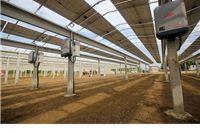 Sunčana elektrana Medinci: U tijeku je postavljanje posljednjeg polja fotonaponskih ćelija