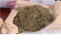 Na području Virovitice i Suhopolja pronađeno više od 5,5 kilograma marihuane