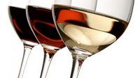 PP Orahovica na En Primeur kušanju mladih vina