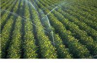Na seminaru Primjena novih tehnologija u poljoprivredi o navodnjavanju, staklenicima i mljekarstvu govorit će stručnjaci iz Izraela
