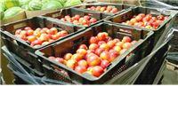 Poljoprivredna proizvodnja slabija, otkup prema planu