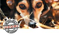 Odgovornost skrbnika pasa