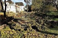 Sve što želite znati o obnovi Dvorca Pejačević i revitalizaciji Gradskog parka