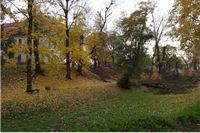 Zdravstveno stanje preostalih stabala u Grdaskom parku od danas nadzire stručnjak Hrvatskog šumarskog instituta