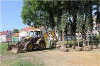 Na mjesto gdje su porušena stara, počela sadnja novih stabala