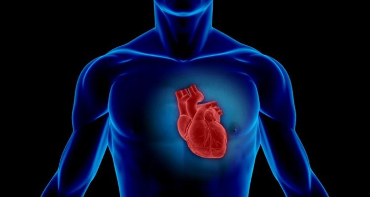 Najavljena prva �upanijska konferencija o prevenciji kardiovaskularnih bolesti