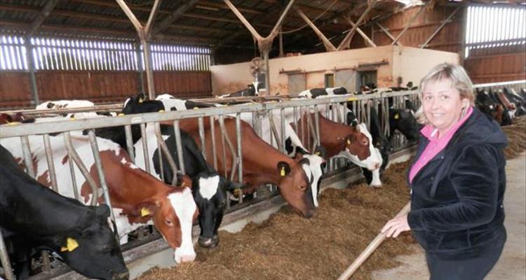 OPG Marčeta: Jasna i Branko Marčeta cijeli su svoj život posvetili proizvodnji mlijeka