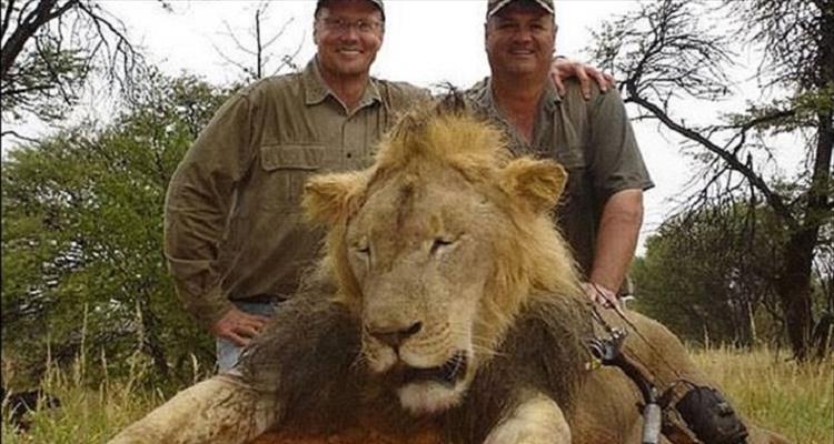 Zvao se Cecil ili ne, nepravda je jednaka