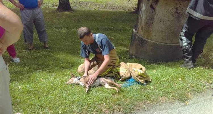 Vatrogasci iz dubokog bunara spasili psića