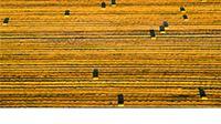 Edukacija o rješavanju imovinsko-pravnih odnosa u postupcima okrupnjavanja poljoprivrednog zemljišta