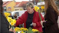 Po deseti puta u Virovitici održana humanitarna akcija Cvijet za dan duže