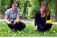 Novo zanimanje - sakupljačice bilja