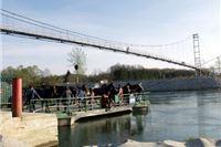 """Prirodoslovno društvo """"Drava"""" protiv hidroelektrana kod Molvi"""