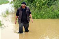 Najveća šteta od poplava na duhanskim poljima