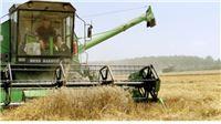 Slatinskom kraju nevrijeme odnijelo 1500 vagona pšenice