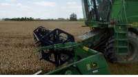 Požeto 80 posto pšenice s 18.000 ha