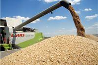 Agrokor od 5. kolovoza otkupljuje pšenicu po 1,20 kn za kilogram