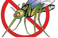 U četvrtak zaprašivanje protiv komaraca