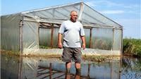 Voda i blato uništili povrće, sad strahuju od komaraca i štakora