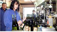 Budućnost u vinu, šaranima i lješnjacima, višak 180 radnika!