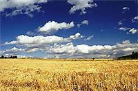Objavljen Javni poziv za dodjelu subvencija za razvoj poljoprivrede na području VPŽ