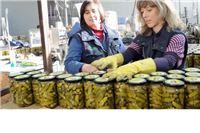 Zbog pogrešne politike 'socijala' isplativija od sadnje krastavaca?!