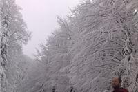 Fotogalerija: Po snijegu dubokom 60 cm do najvišeg vrha zapadnog Papuku