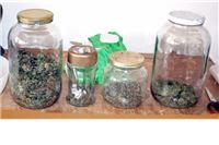 Desetorica 182 grama marihuane čuvala u 'dunstflašama'