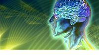 Obrazovanje i svijest – putovima obrazovne evolucije