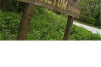 Od 31. svibnja do 4. travnja održavat će se svakodnevne organizirane posjete Arboretumu Lisičine