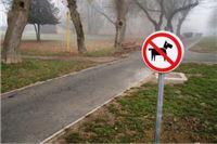 Diskriminacija! Gradska vlast zabranila psima pristup i šetnju parkom