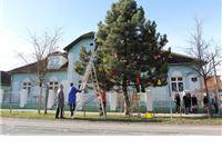Učenici Centra za odgoj, obrazovanje i rehabilitaciju Virovitica ukrasili bor ispred svoje škole