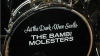U Noći muzeja oduševio The Bambi Molesters