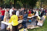 Pčelari ne žele sudjelovati na Agroexpu: Vratite nam manifestaciju u središte grada