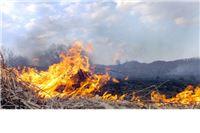 Požari bjesne Slavonijom, inspektori miruju