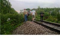 Vjetar srušio golemo stablo na prugu između  Slatine i Nove Bukovice. Putnici uklonili stablo