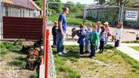 Djeca Dječjeg vrtića Cvrčak –skupina prijatelji posjetila sklonište za životinje