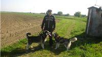 Josip Sunđi Sheriff: Moj život s haskijima