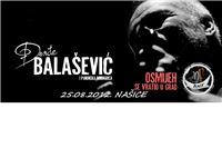 U Boom po karte za koncert Balaševića i Panonske mornarice