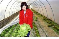 Orahovačko je povrće na tržištu cijele Hrvatske