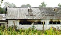 Planula svinjogojska farma Senkovac, životinje spašene