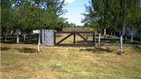 AUDIO prodaje 18 nekretnina, najskuplje zemljište u Virovitičko – podravskoj županiji