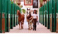Pustara Višnjica: Napredak uz šaptaj konja