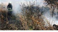 Zbog paljenja strništa mogu ostati i bez cijelog poticaja