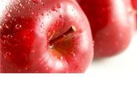 Iz voćnjaka ukradeno više od jedne tone konzumnih jabuka