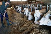 Sabor razmotrio paket poljoprivrednih zakona