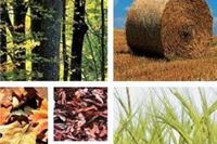 Pet slavonskih županija iz geotermalnih izvora i biomase mogu grijati pola Hrvatske